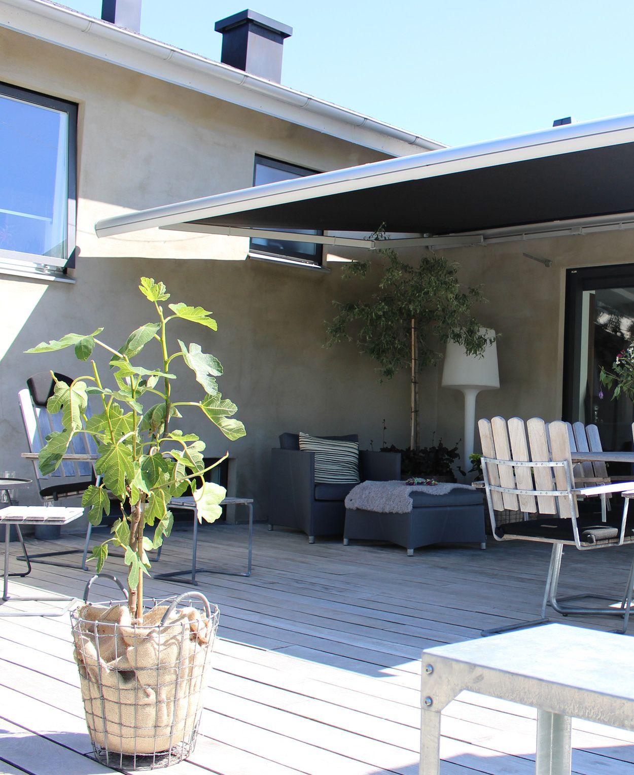 Morris Interiör erbjuder utvändiga solskydd som markis, pergola och zip-screen som produkt för solskydd